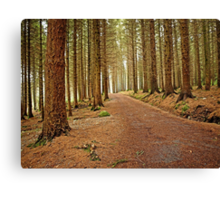 Mourne Mountains Forest Canvas Print