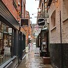 Godstall Lane after a Shower of Rain by AnnDixon