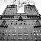 Central Park West by Jasper Smits