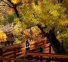 Girl among colorful fall in Red Rock canyon by loiteke