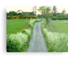 Sheep May Safely Graze Metal Print