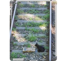 cat on the rails iPad Case/Skin