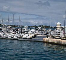 Harbor by Lucinda Walter