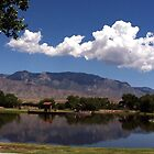 Sandia Lakes by Loree McComb