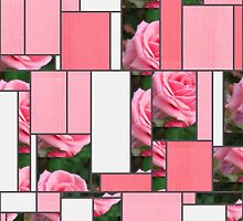 Pink Roses in Anzures 2 Art Rectangles 9 by Christopher Johnson