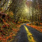 Just In Time by Charles & Patricia   Harkins ~ Picture Oregon