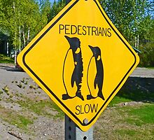 Slow Pedestrians by Graeme  Hyde