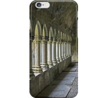 Cloisters at Quin iPhone Case/Skin