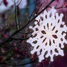 spring snowflake by Dawna Morton
