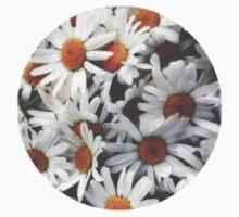 round cut daisies by jasminasheer