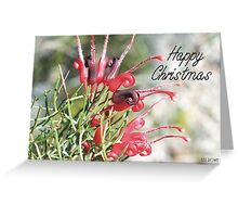 Grevillea Wilsonii Greeting Card