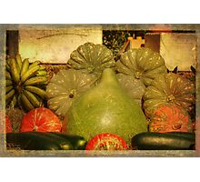 Vegetable Harvest Photographic Print