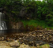 Thornton force by Crimmy