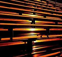 Sunset in the Bleachers by Gilda Axelrod