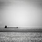 Tanker by Paul Pasco