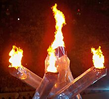 2010 Vancouver Winter Olympic Flame by mkoski