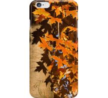 Crisp, Orange Autumn Shadows iPhone Case/Skin
