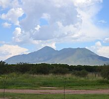 San Jose Mountain - In Mexico just across the border. by Ann Warrenton