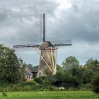 dutch windmill by Nicole W.