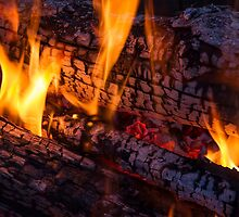 Wood Fire by Kenneth Keifer