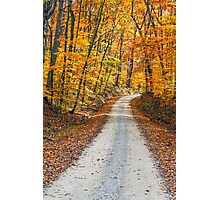 Country Road and Fall Colors Photographic Print