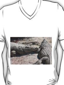 crocodile at the zoo T-Shirt