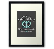 Soldier First Class Framed Print