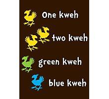 One Kweh Two Kweh Green Kweh Blue Kweh Photographic Print