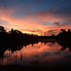 Sunrise in North Fort Myers by kathy s gillentine