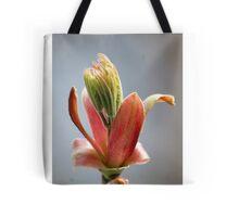 Budding Maple - Memories of Spring Tote Bag