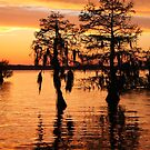 Chowan River at Sunset by WeeZie