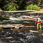 Fly Fishing In Yellowstone - 2 by mcstory