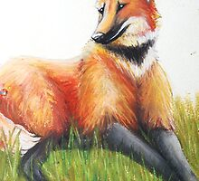 Resting Maned Wolf by marandart