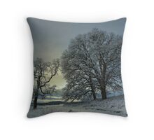 Snow and Light Throw Pillow