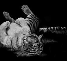 White Tiger Rolling in Grass by Heather Ward