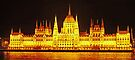 Hungarian Parliament Building at Night by Graeme  Hyde