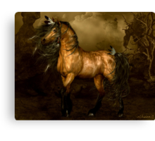 Shikoba - Choctaw Native American Horse Canvas Print