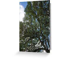 The Intricate Natural Canopy - Vertical Greeting Card