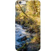 Afternoon Delight in Paradise iPhone Case/Skin