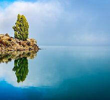 Pine Reflection by Adrian Alford Photography