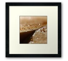 Crying Squash Abstract Framed Print