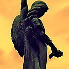 The Dark Side of Angels  by Cheri Sundra