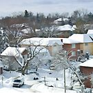 The Morning after a Big Snowstorm in Toronto, ON, Canada by Gerda Grice