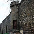 Eastern Sentry Tower. by Jeanette Varcoe.