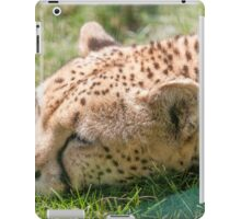 leopard at the zoo iPad Case/Skin