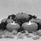Pumpkin Pie To Follow by Sandra Foster