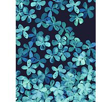 Hand Painted Floral Pattern in Teal & Navy Blue Photographic Print