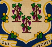 Connecticut State Flag  Sticker