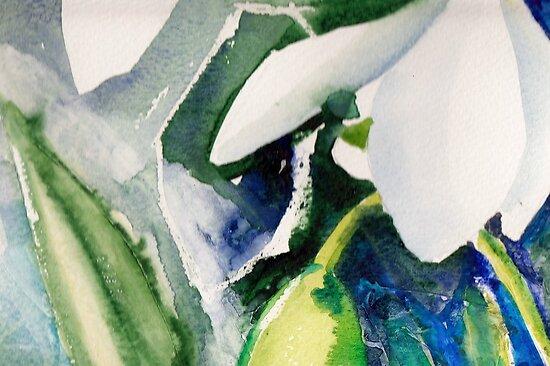 Snowdrops by Val Spayne
