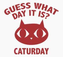 Guess What Day It Is? Caturday by DesignFactoryD